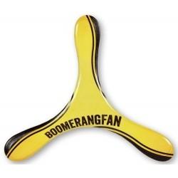 Boomerang Turnix