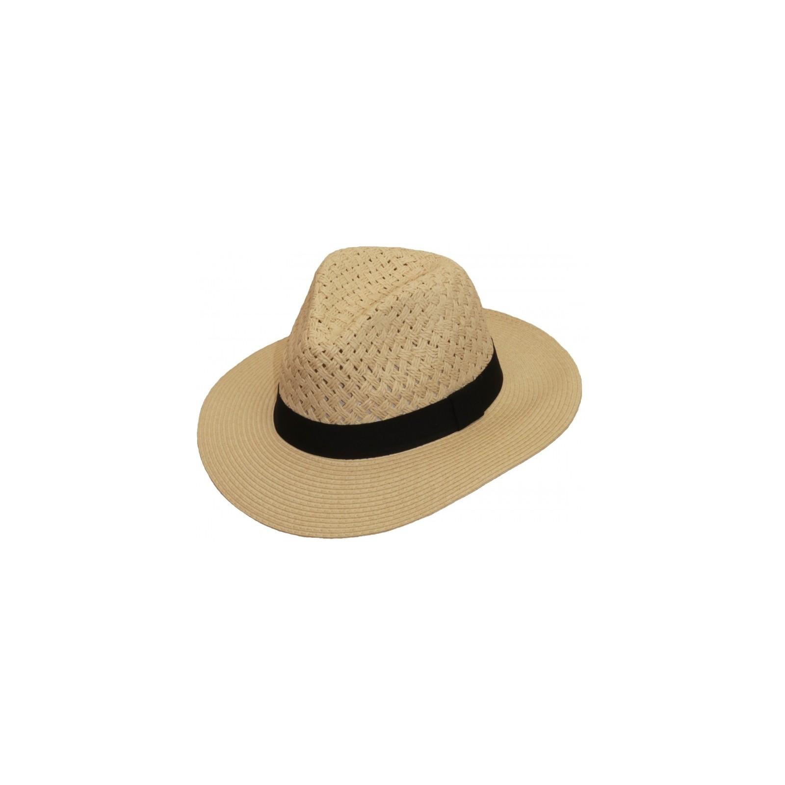 Scippis Aquilo hoed